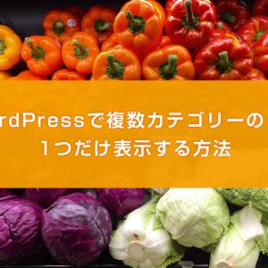 WordPressで複数カテゴリーのうち1つだけ表示する方法